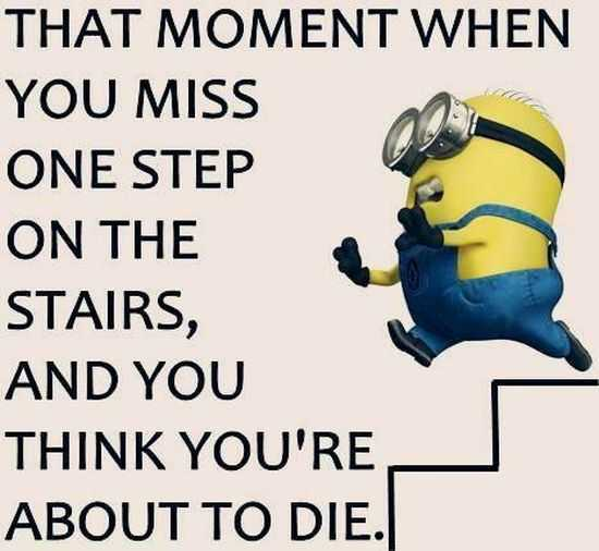 New Minion Pictures Of The Day 032