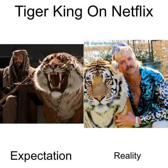Tiger King Memes - Did Not Expect That