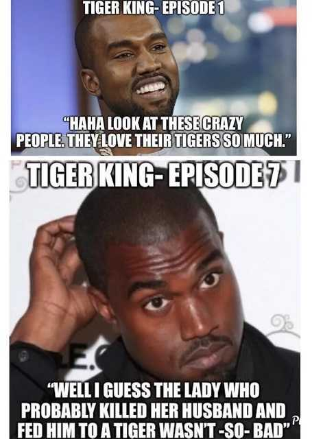 Tiger King Memes - Not Sure About This Show