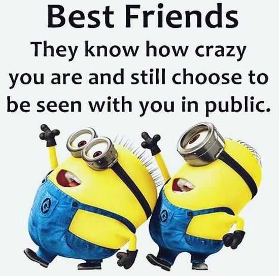 The Minions Quotes Funny 013