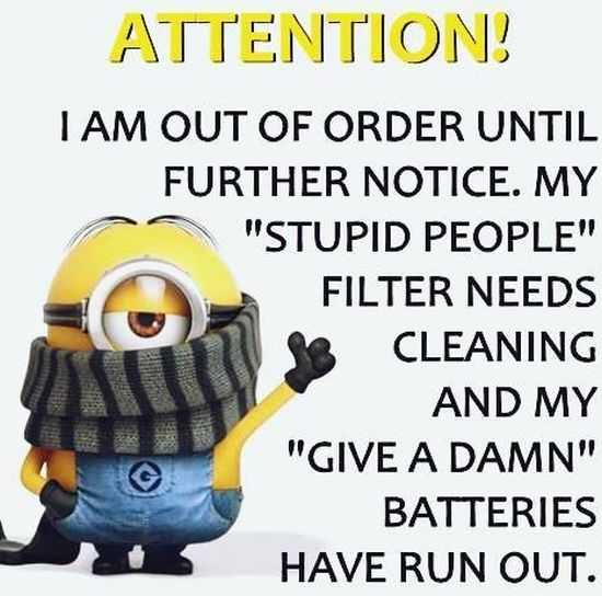 The Minions Quotes Funny 034