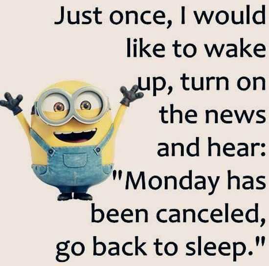 The Minions Quotes Funny 036
