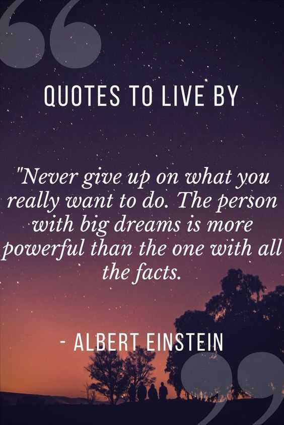 Quote Nevergiveup