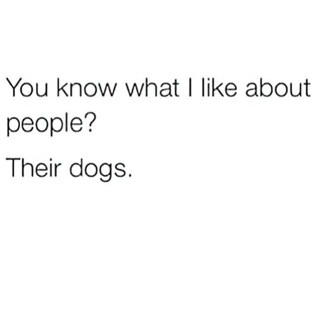 Quote The Dogs