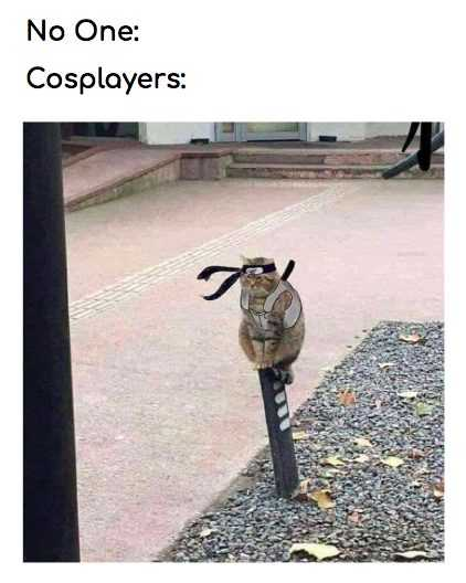 Funny No One Cosplay