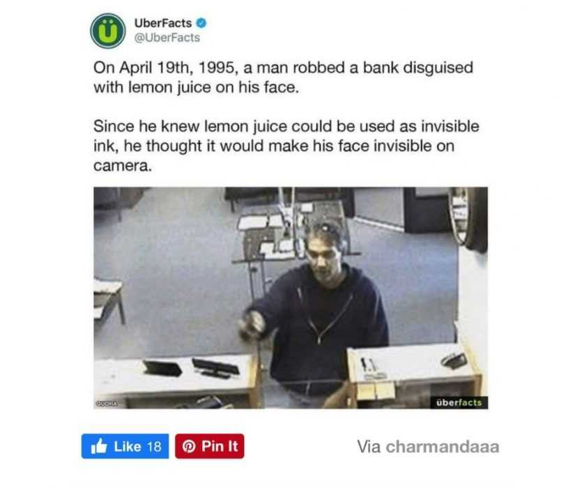 Worry For Humanity  Life Fails  Dumb Bank Robber Fail