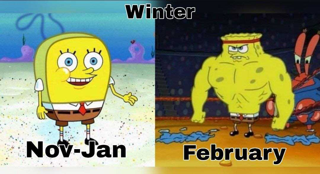 Texas Freeze Memes  Winter Gets Texas Sized In February
