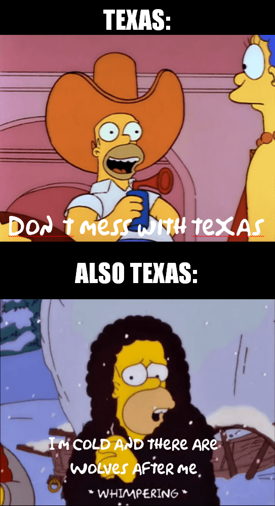 Texas Freeze Memes  Texas Draws The Line At Cold.
