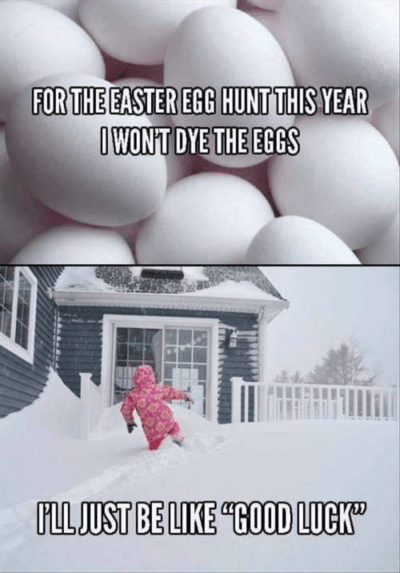 Easter Meme Pictures
