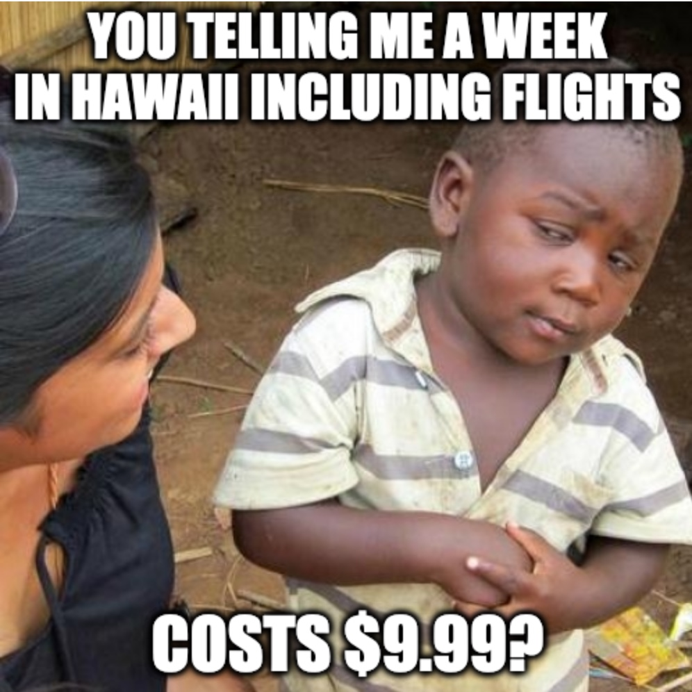 Travel Scams Are Back Meme