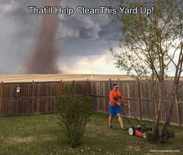 That'll Help Cleanthis Yard Up!