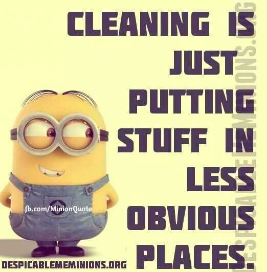 Snarky Funny Quotes  Cleaning