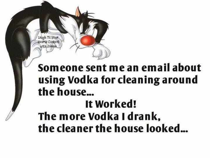 Snarky Funny Quotes  Vodka