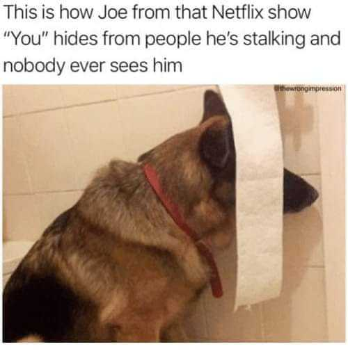 Joe Goldberg Memes For You Fans - 33 Funny Memes That Will ...